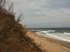 beach and bluffs, look quite different after last winter storms,