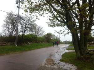 Everyone walked or ran the BI Shad Bloom 10k race which was the only wet day - this is Lorna, Peter and Sarah