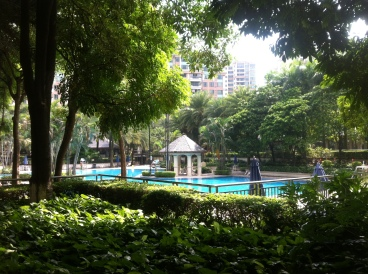 Our swimming pool - and the block across the inner circle from us
