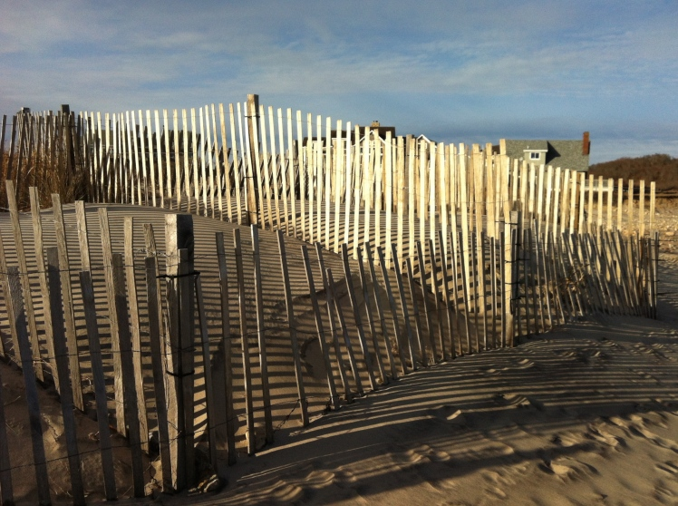 Snow fences block the wind, the sand is caged, the dunes can rebuild. They make shadow patterns too.