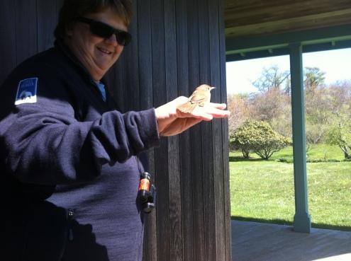 Faye holds a wren befor eit flies off