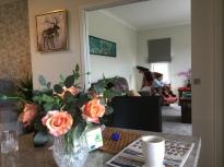Cindy has created a beautiful home